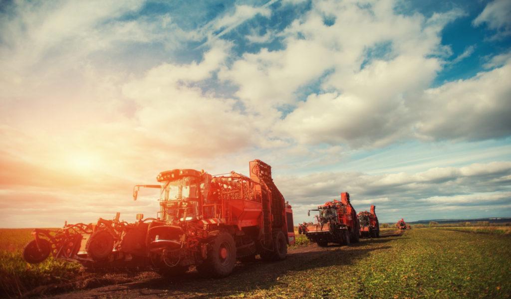 Agro food Industry